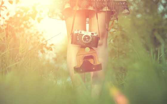 солнце, трава