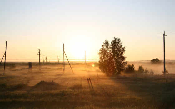 рассвет, туман, природа, поле, утро, дерево, russian,