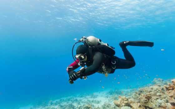 водолаз, под, водой, море, скафандр, pisces, риф, ocean, лодка, than, водолазы,