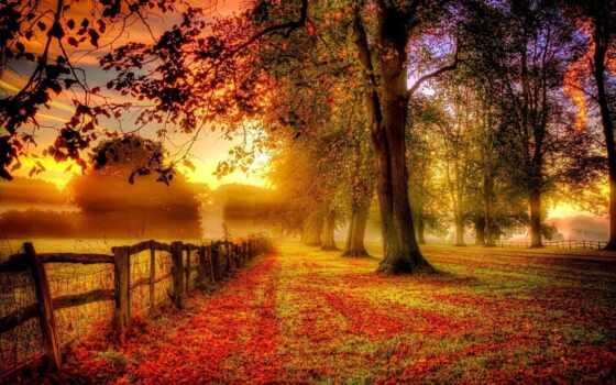 осень, красивый, стихи