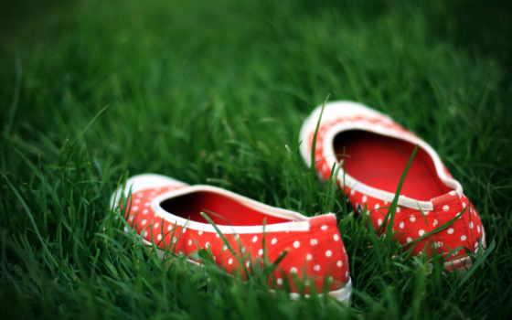 туфли, траве, качественные