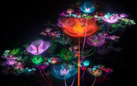 цветы, optimus, графика