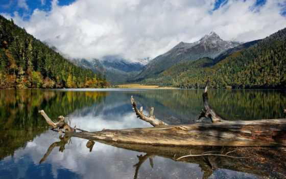 озеро, lakes, trees, water, природа, отражение, high, лес,