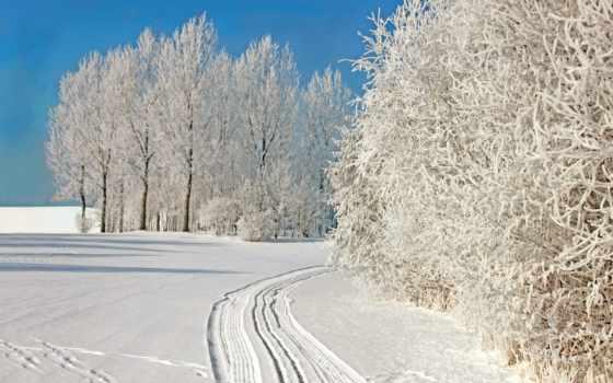 frozen,
