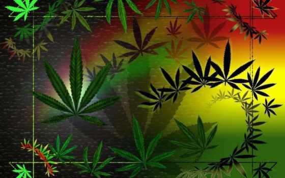 reggae, muzyka, регги, музыка, rasta, surforeggae,