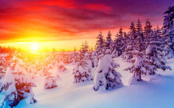 winter, коллекция