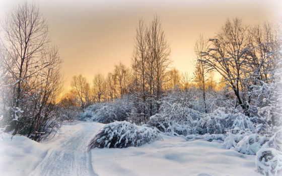 winter, закат, деревня