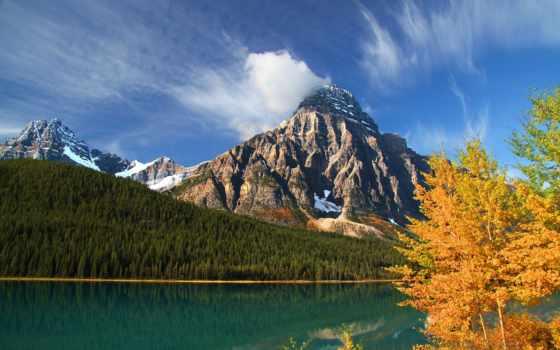 mount, chephren, banff, горы, waterfowl, trees, howse, альберта, озеро, lower, peak,