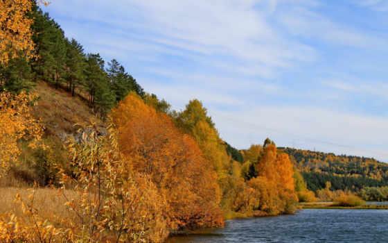 осень, природа, года