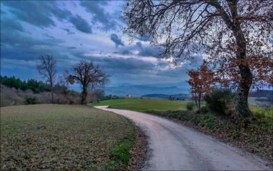 landscape, природа, this