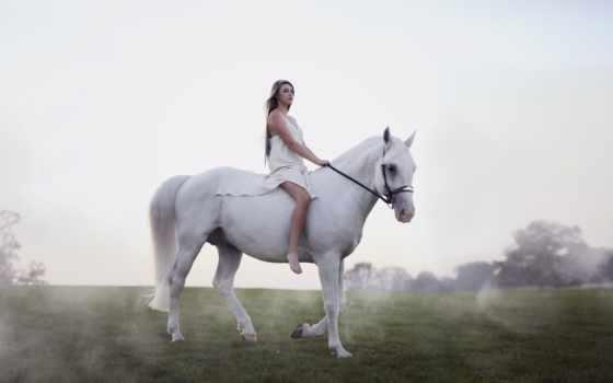,лошади,природа,девушка,прогулка,