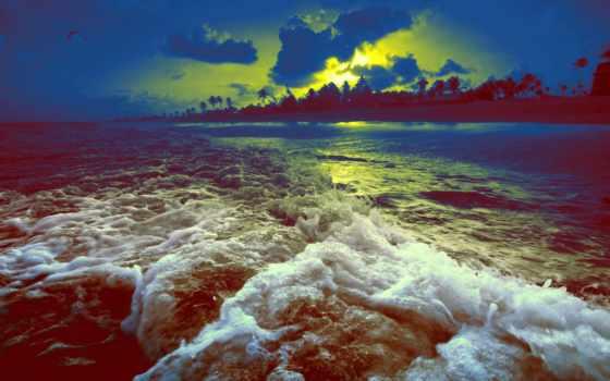 закате, закат, красивые, пляж, море, берег, пальмы, смотреть, красиво, waves,