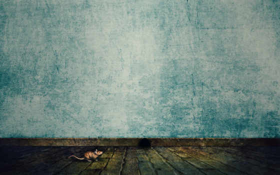 texture, wallpaper, мышка, textures, grunge, wallpapers, стена, пол, turquoise, abstract, similar,