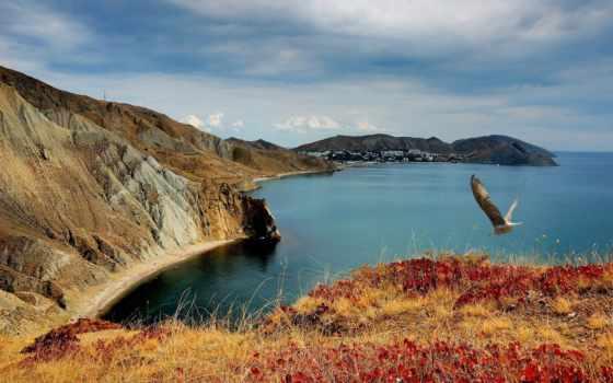 природа, обоях, деревьев, лесов, море, природу, качественные,