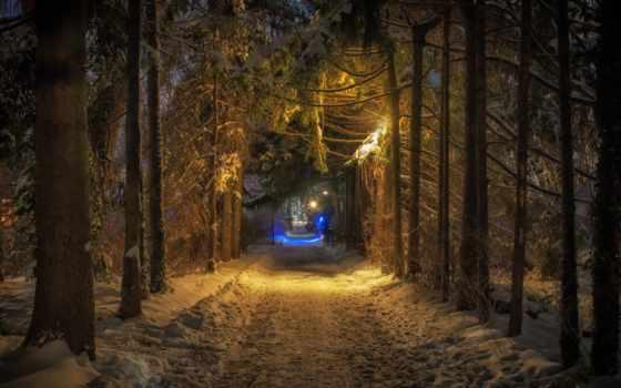 pantalla, bosques, bosque, fondos, luz, photos, los, ночном, парке, дорога,