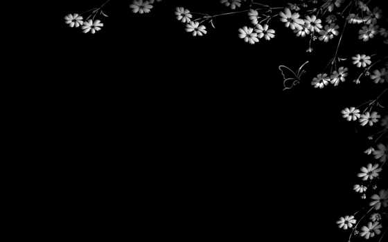 черный, цветы
