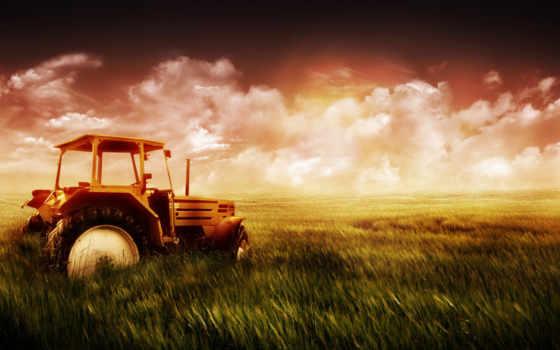 широкоформатные, трактор, поле,