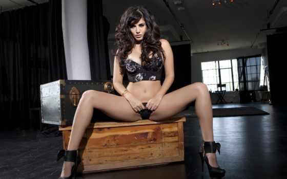 sexy, leone, sunny, hot, плакат, print, модель, lingerie, фото, гигант, ebay,
