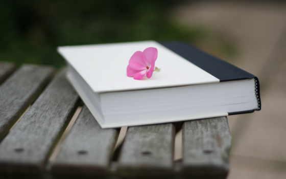 красивые, книге, книги, буккроссинг,
