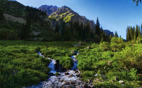ala, арча, park, ущелье, бишкек, киргизии, natural,