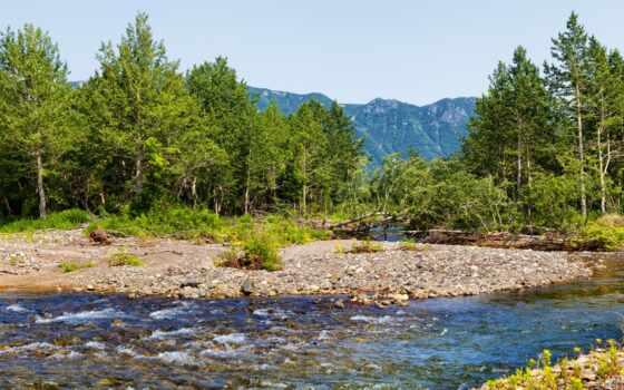 гора, река, ручей, камчатка, картинка, природа, дерево, permission, rock