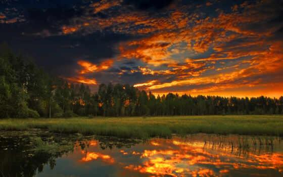 природа, россия, лес