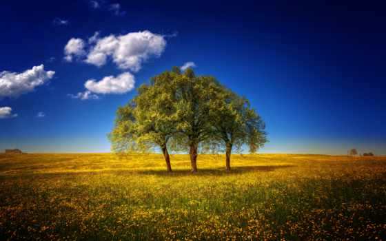 landscapes, красивые, пейзажи -