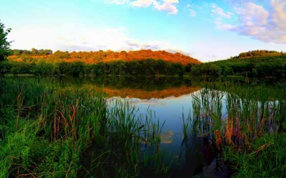 реки, картинка, природа