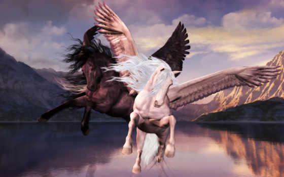 пегас, лошади, zhivotnye,