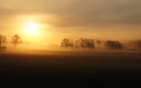 поле, туман, landscape