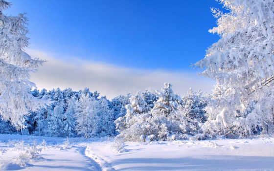 winter, широкоформатные, коллекция