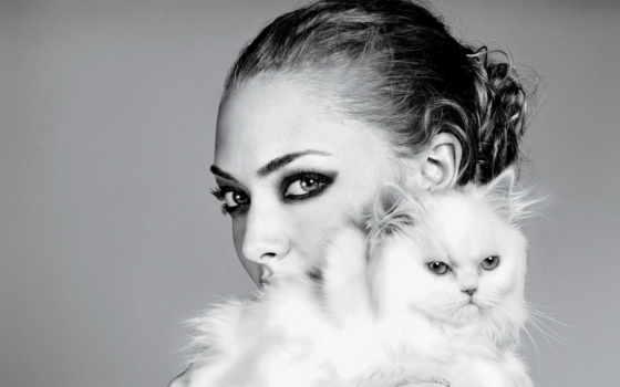 кошки, devushki, красивые, девушка, котики, кот, кошек, широкоформатные, котенок, кошкой,