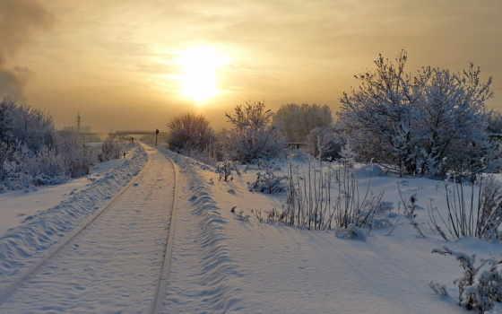 winter, природа, страница