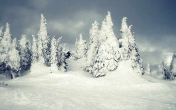 природа, winter, снег