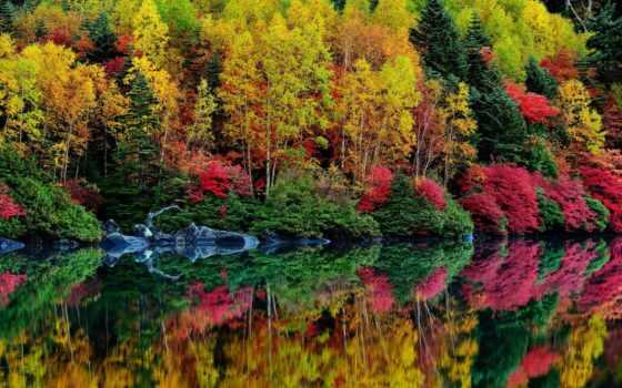 осень, water, природа Фон № 147544 разрешение 2048x1348