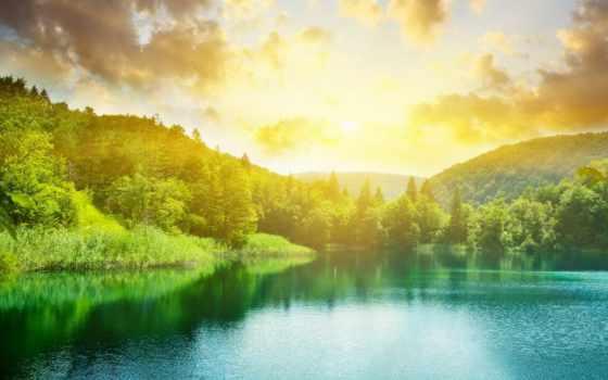 озеро, лес, закат, summer, зелёный, landscape, освещает, природа, банка,