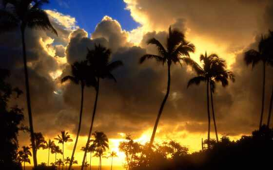 море, adsbygoogle, природа, adsense, фото, hawaii, креатив, красивый
