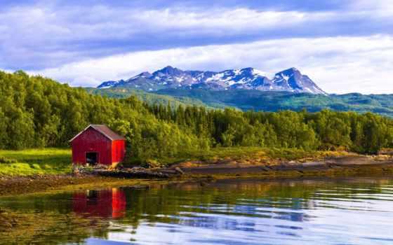 норвегия, wonderful, лес