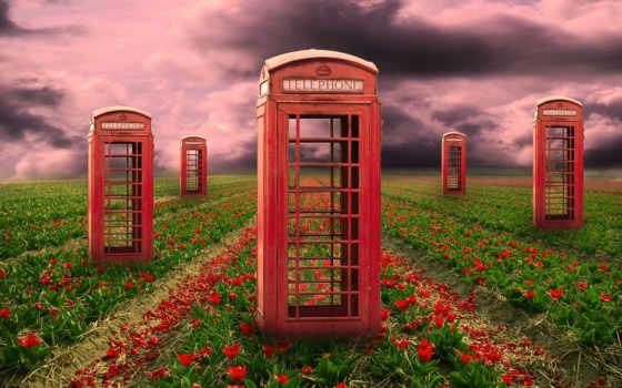 telephone, психоделика, flowers