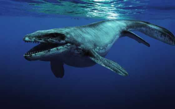 динозавры, морские, prehistoric