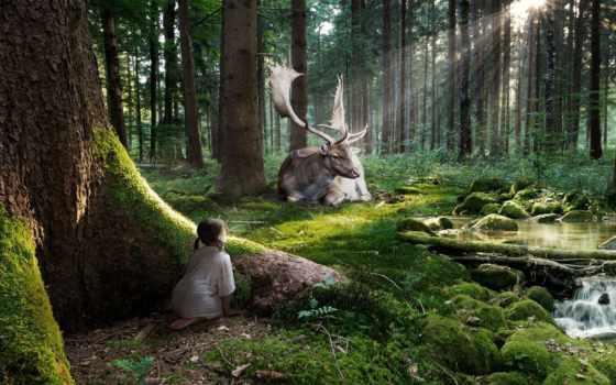 лес, сказочный, fantasy, девушка, лесу, высококачествен,
