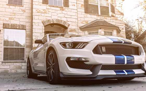 ford, white, машины, автомобили, бесплатные, mustang, zoom, vintage, roadster, sports,