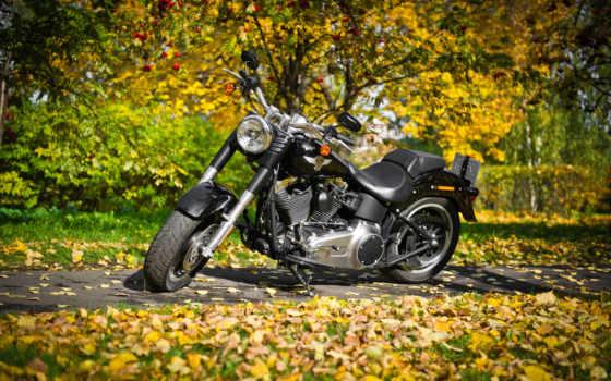 байки, мотоциклы, спорт, harley, davidson, мотоциклами, ipad,