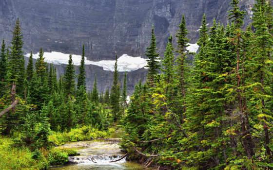 , лес, река, горы,