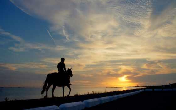 всадник, лошадь, аватар, закат, телефон, силуэт, фото, mobile, арта, forum