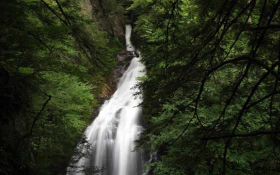 водопад, лес, природа Фон № 175604 разрешение 2560x1600