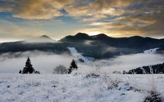 winter, снег, trees, вечер, лес, елка, небо, природа
