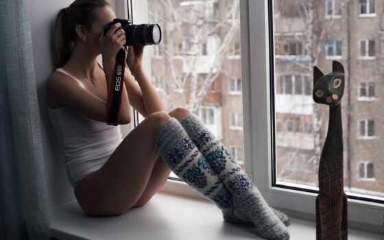 окно, яndex