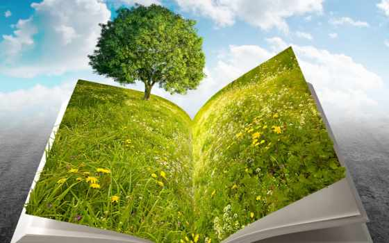 book, nature