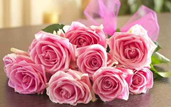 розы, букет, cvety, бутоны, роза, розовые,